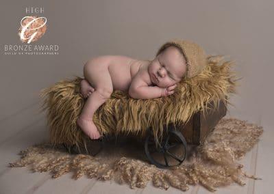 newborn baby on carriage